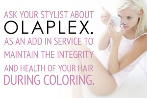 Olaplex Hair Colouring Products in Guelph, Ontario